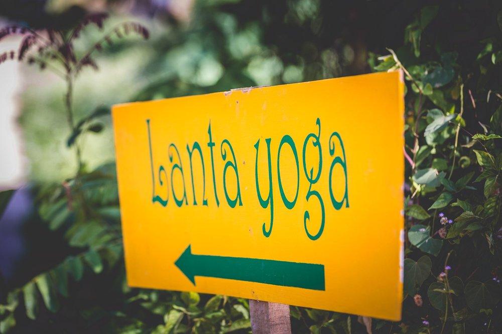 267Lanta Yoga_preview.jpeg