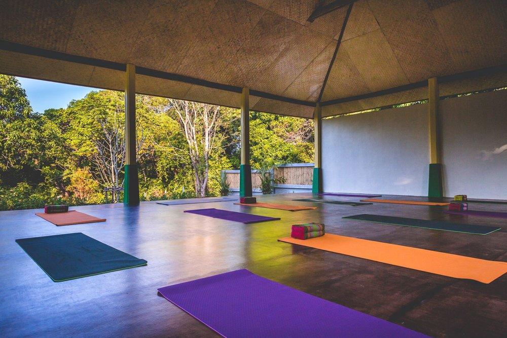 13Lanta Yoga_preview.jpeg