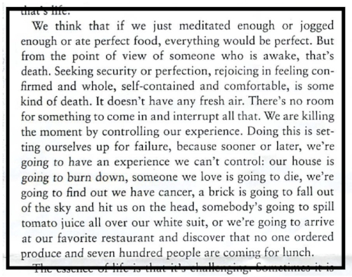 From   When Things Fall Apart   by Pema Chodron
