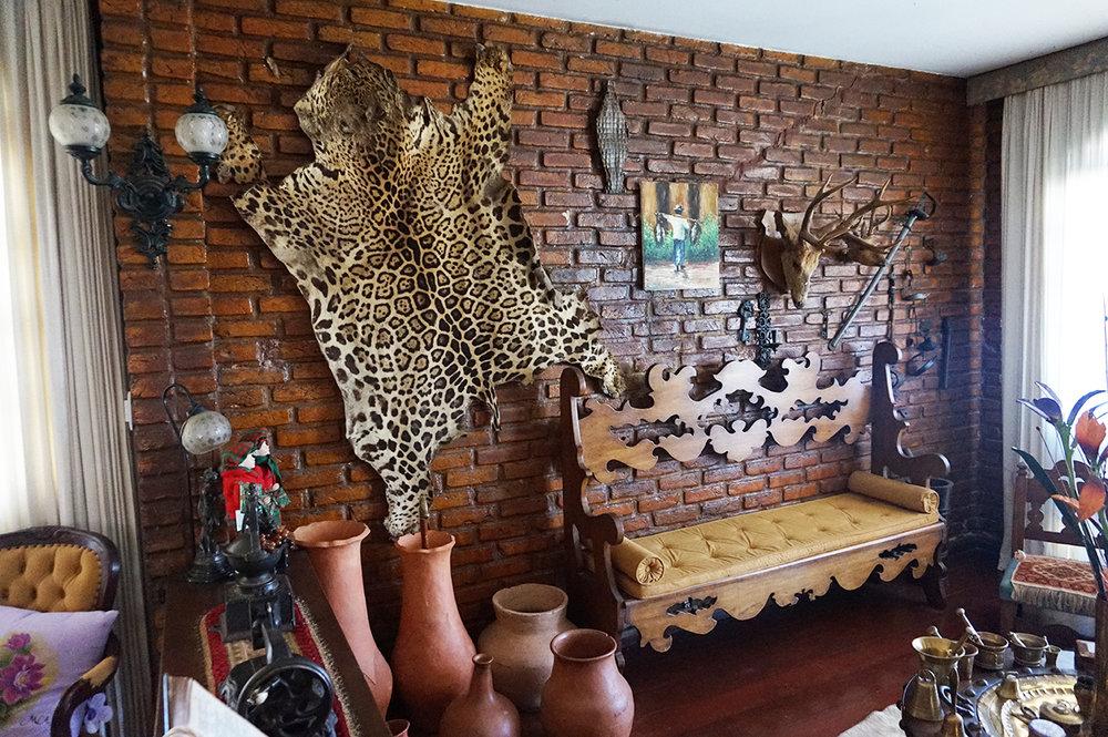 house-tour-mineiros-brazil9.jpg