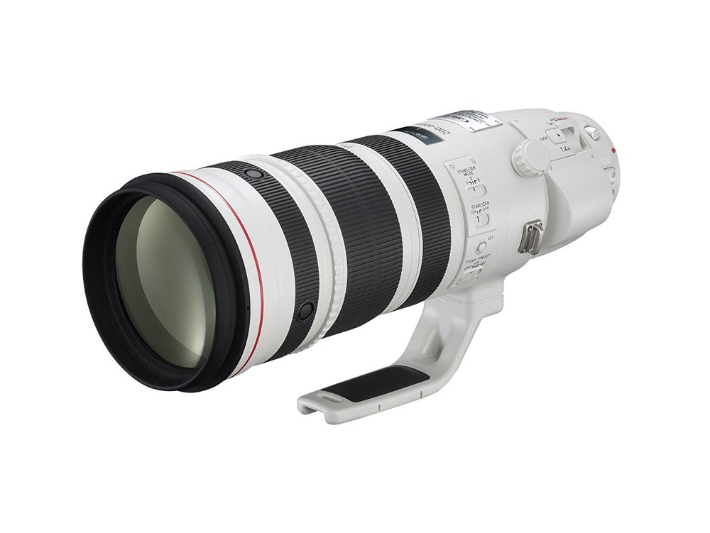 Canon EF 200-400mm f/4L IS USM Extender 1.4x -