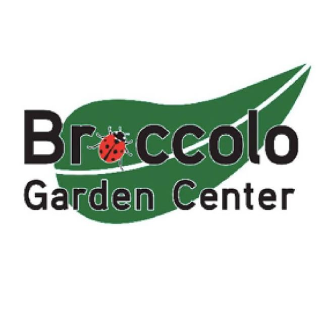 A special thanks to Broccolo Garden Center for bringing our Pride float to life with greenery galore. Visit them at broccolotreeandlawn.com to Stand Out: [Plant] in Color. #rocpride2018