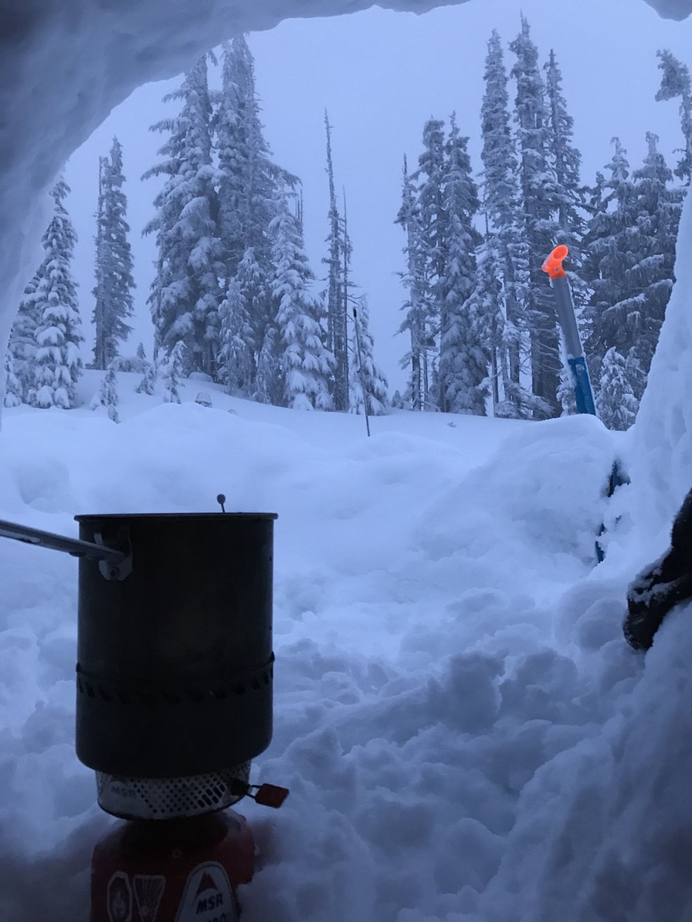 Morning view from inside the snow cave.