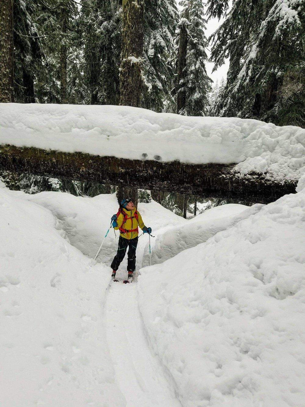 Winter wonderland! Photo by Tony.