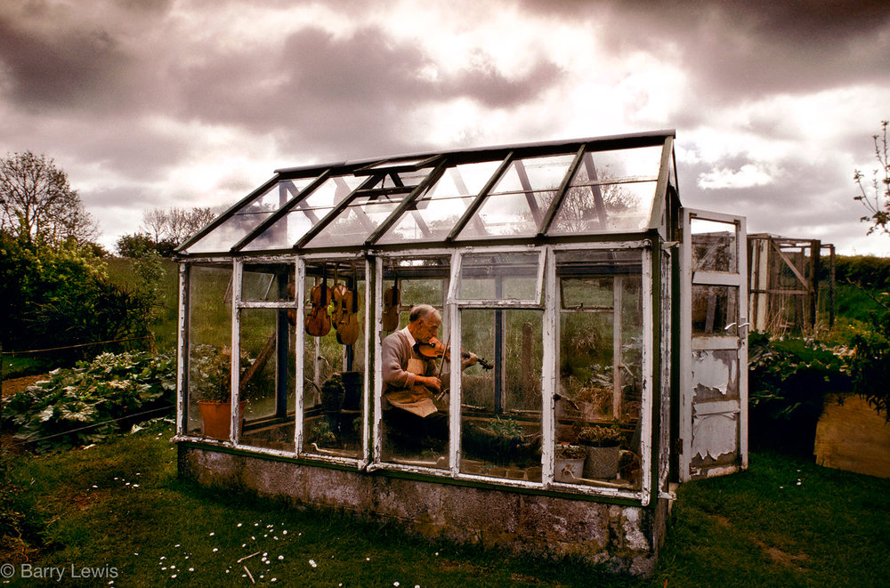 Sam Stevenson, fiddle maker, playing in his greenhouse as the varnish dries, Broughshane, Ireland, 1991.