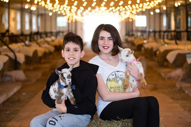 """Brother and Sister duo, Aldito and Olivia Boustani! @GilberstvilleFarmhouseWeddings is a family owned busines, and intends to stay that way. Olivia and Aldito pictured here not only help with #GilberstvilleFarmhouseWeddings but they are also #NYGoatYoga handlers. They are there during class to help make your #goatyoga dreams come true! These two are not shy to share with you behind-the-scene stories of what happens at #GilbertsvilleFarmhouse . When they aren't """"working"""" they're being your typical pre-teen kids. Swimming in our pond, playing video games, walking the dogs, or going to school, just to name a few.⠀⠀⠀⠀⠀⠀⠀⠀⠀ ⠀⠀⠀⠀⠀⠀⠀⠀⠀ Photo Credit: @Korverphotography⠀⠀⠀⠀⠀⠀⠀⠀⠀ Sent via @planoly #planoly"""