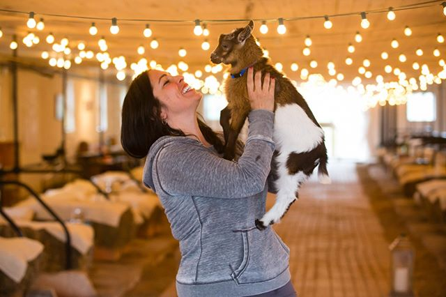 NY GOAT YOGA BEGAN AS A #HAPPY COINCIDENCE. @sHARONBOUSTANI , THE OWNER OF #NYGOATYOGA WAS GIFTED TWO ADORABLE BABY GOATS FOR EASTER OF 2017, TO EXPAND THE #FAMILY ON THE #FARM. OUR BOUNCING BABIES INSPIRED THE ACTIVITY WHEN THEY HOPPED ALL OVER THE HOUSE, THE BARNS AND THE TABLES OUTSIDE. THEIR SNUGGLES AND ADORABLE KISSES MADE US GET 3 MORE. SOON ENOUGH GOAT YOGA WAS BORN ON THE FARM. OUR 2017 SEASON WAS A BLAST AND TOOK THE CITY AND STATE BY STORM. SOME OF OUR FAVORITE YOGIS INCLUDE @TYRABANKS AND ⠀⠀⠀⠀⠀⠀⠀⠀⠀ @bambambaklava #ACTION BRONSON. WE WANT TO SPREAD THE JOY! COME JOIN US FOR THE 2018 SEASON AT OUR @gilbertsvillefarmhouseweddings LOCATION!⠀⠀⠀⠀⠀⠀⠀⠀⠀ ⠀⠀⠀⠀⠀⠀⠀⠀⠀ Photo Credit: @Korverphotography⠀⠀⠀⠀⠀⠀⠀⠀⠀ Sent via @planoly #planoly