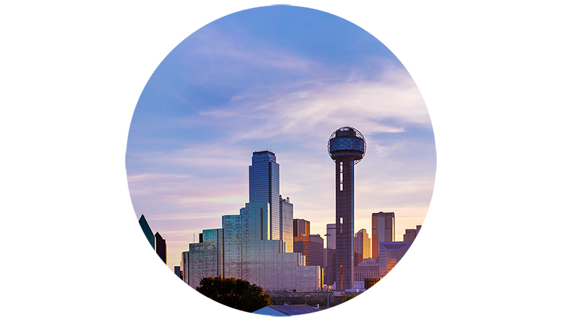 Dallas Skyline Icon