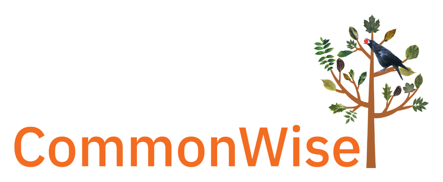 CommonWise