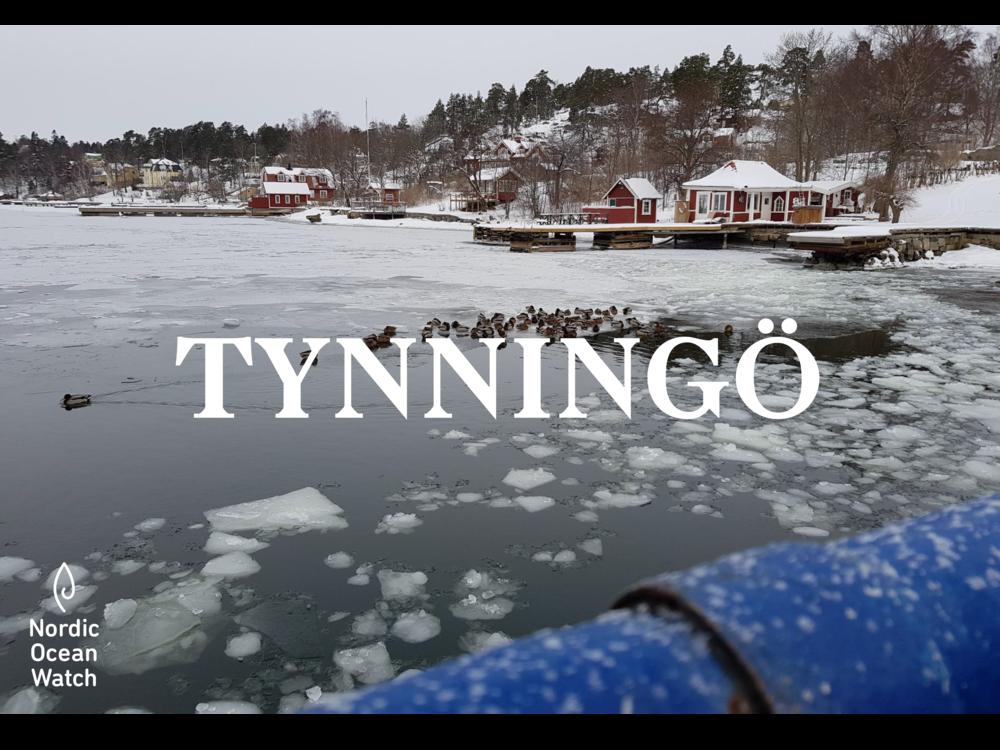 Tynningo_OceanWatcher.png