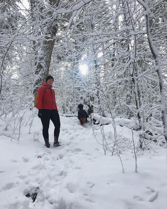 We spent the weekend trail scouting in Algonquin Park for our winter day hikes! Which trails do YOU want to try in the snow! Day trip schedule coming soon! • • • #hikewithdogs #hikingwithdogs #hikingwithfriends #trackandtower #snowhike #protectourwinters #goodtimesoutside #optoutside #forceofnature #winterwonderland #girlswhohike #womenwhohike #womenwhoexplore #hikeeveryday #traillife #exploreontario #discoverontario