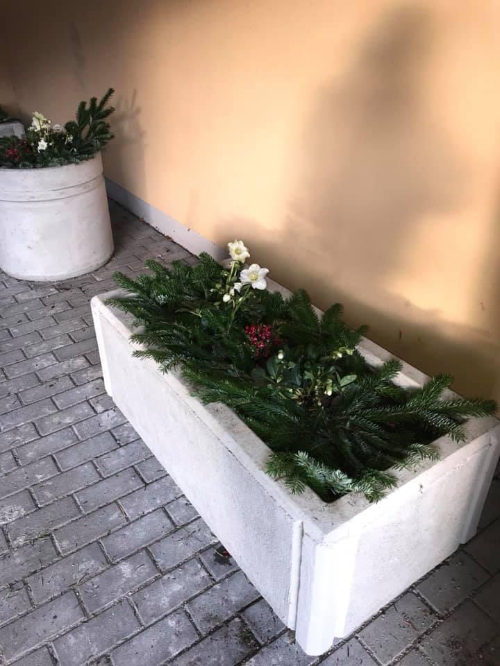 plantering1.jpg
