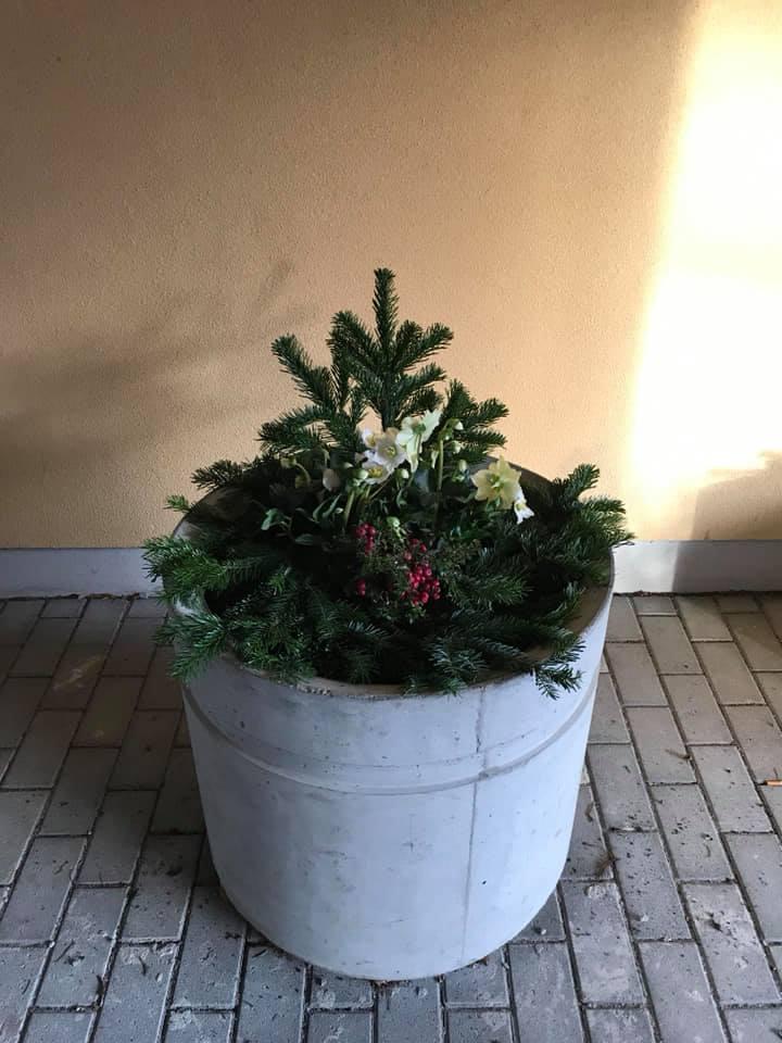 plantering.jpg