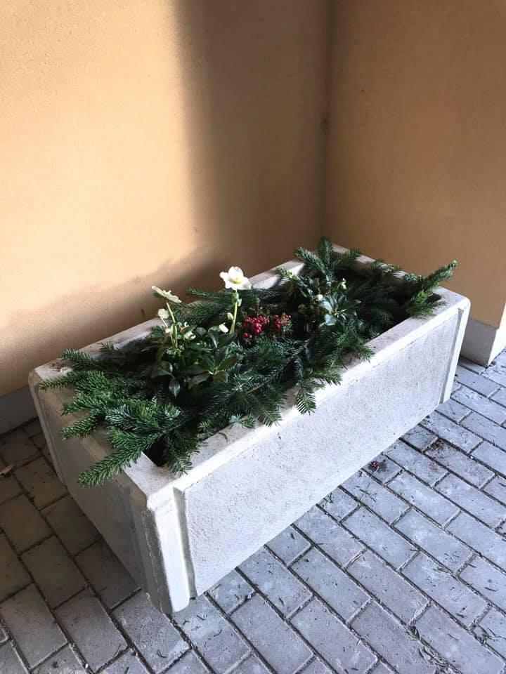 plantering2.jpg