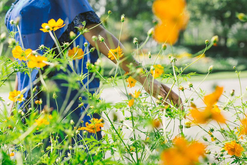 woman-walking-through-flowers.jpg