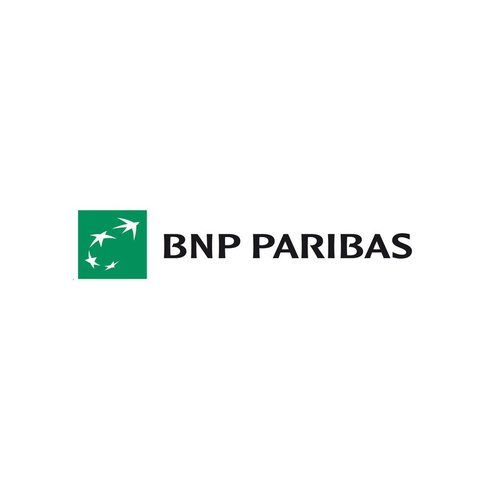 SS BNP.jpg