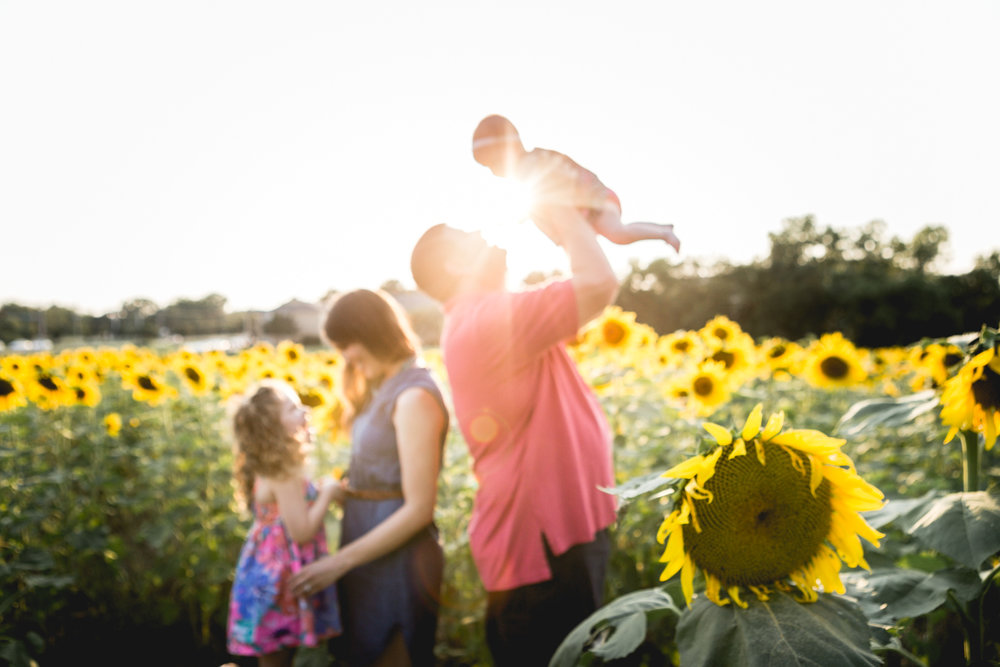 Family playing in the sunflower field at Kansas State University in Manhattan, Kansas. Captured by photographer, Renee McDaniel of Renee McDaniel Photography.