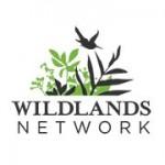 wildnetwork-150x150.jpg