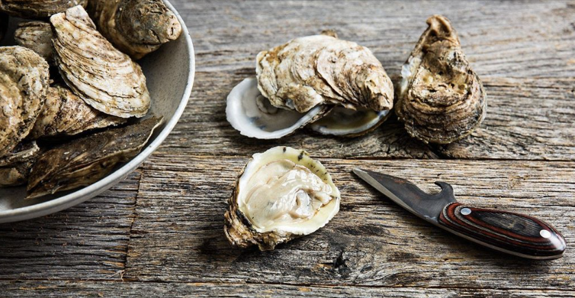 Gather friends and family to reconnect in this Lowcountry ritual-shucking and celebrating with an oyster roast at The Watch with Community Partners, Lowcountry Oyster Company and the Charleston Waterkeeper. Enjoy live music and a menu that includes:  - Steamed Singles - Half Shell Raw Bar - Lowcountry Boil - Buttermilk Fried Chicken - Beef Chili - Loaded Baked Potato Salad - Roasted Veggie Salad - Popsicle Cart  All Adult Tickets include Seasonal Beer and Wine. Liquor is available for purchase.