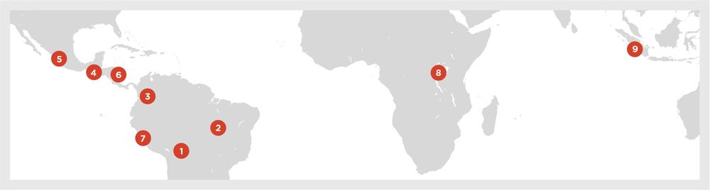 1 . Bolivia  2.  Brazil  3 . Colombia  4 . Guatemala  5 . Mexico  6 . Nicaragua  7 . Peru  8 . Rwanda  9 . Sumatra