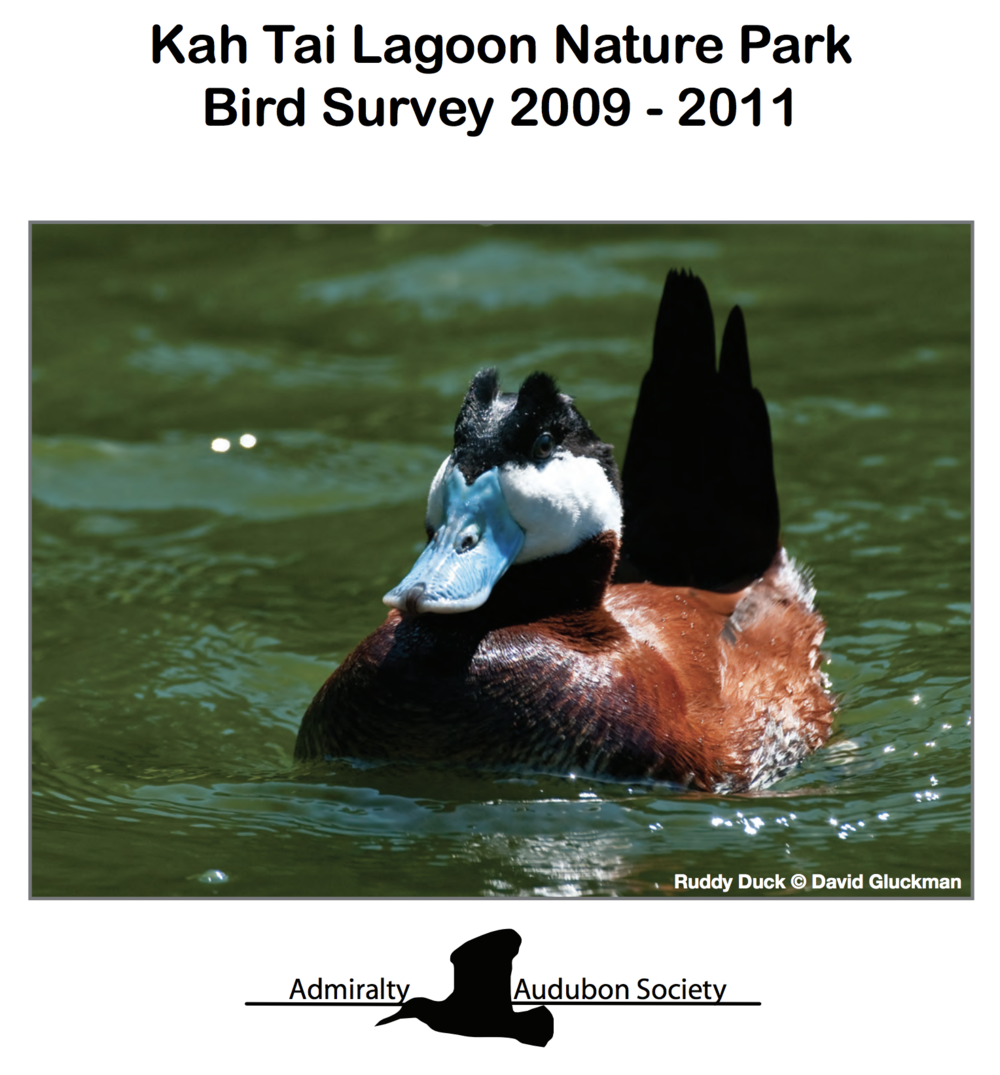 2009-2011 Kah Tai Bird Survey - The Chapter funded a two-year study, completed in late 2011, to document what bird species are using the park.