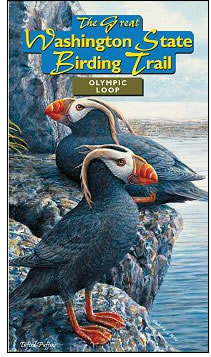 Olympic Loop Birding Trail Map - Order yours here from Washington and Seattle Audubon