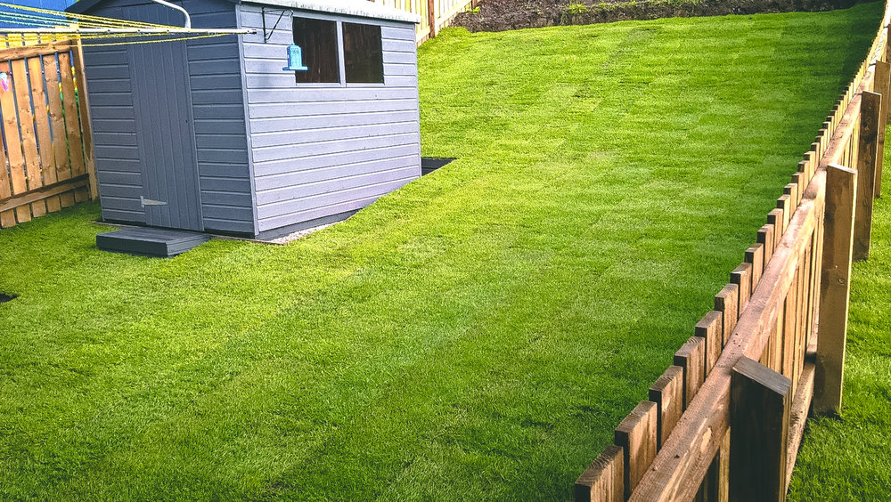 Ground preparation and new lawn