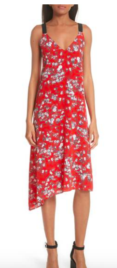 RAG AND BONE FLORAL DRESS FIT