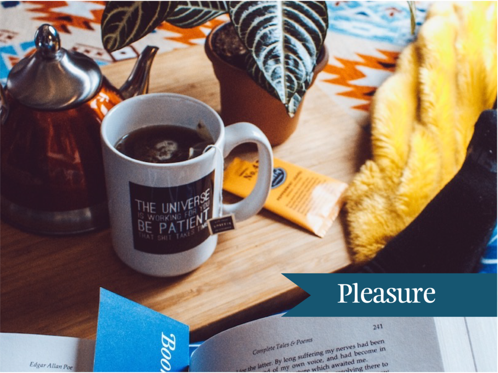 Blog post pleasure.png
