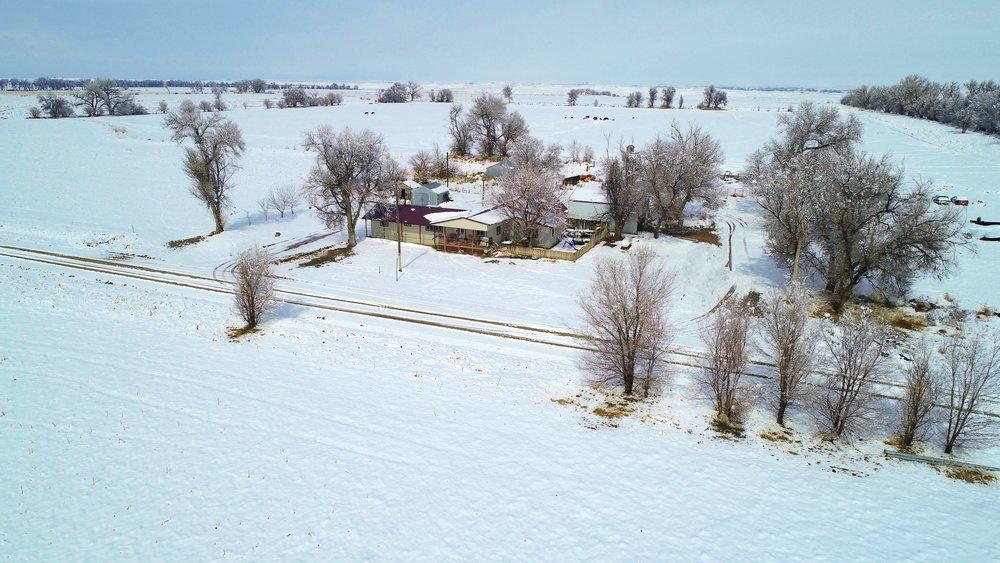 Home place snow.JPG