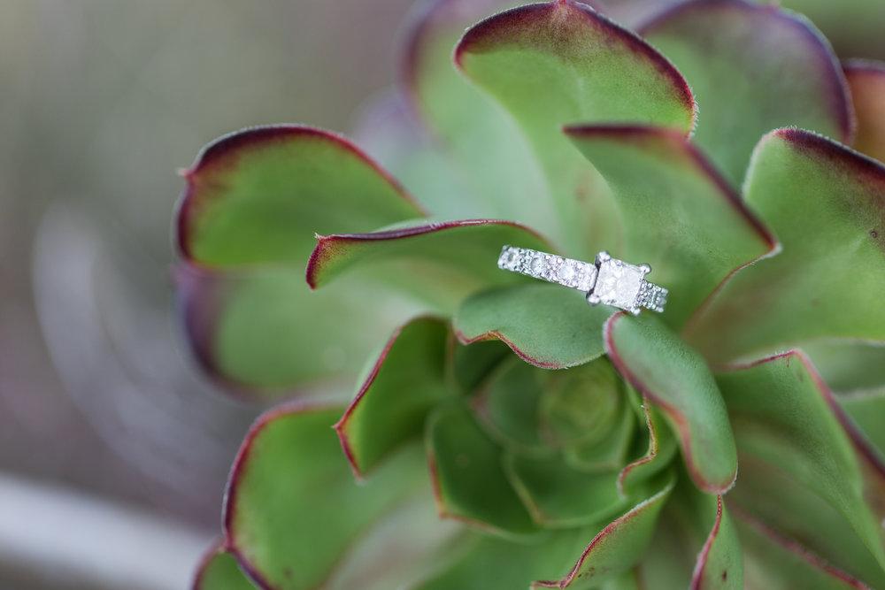 Caroline + Kosta McMenamins Anderson School Bothell Engagement-43.jpg