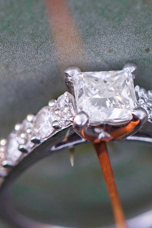 Caroline + Kosta McMenamins Anderson School Bothell Engagement-38.jpg