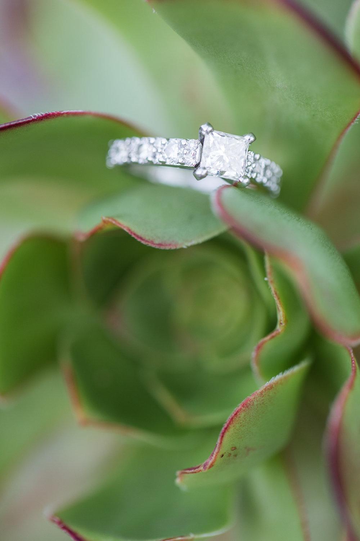 Caroline + Kosta McMenamins Anderson School Bothell Engagement-46.jpg