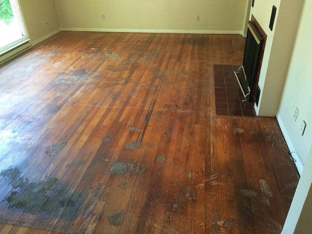 Pet stain damage affects the hardwoods and or Subfloor beneath