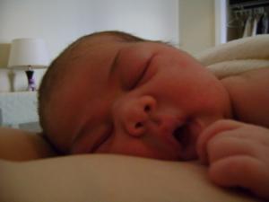 Sleeping soundly on her mama...