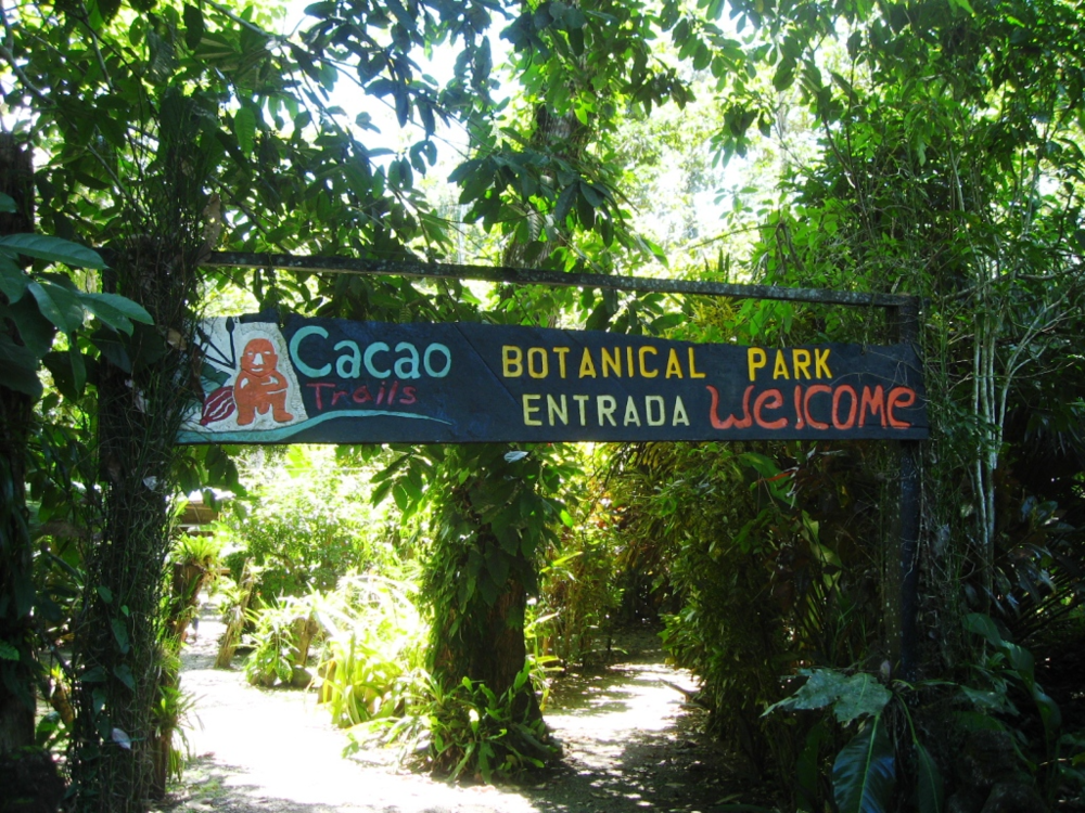 Cacao Trails.png