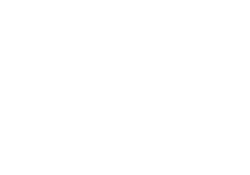 Summoners' Society