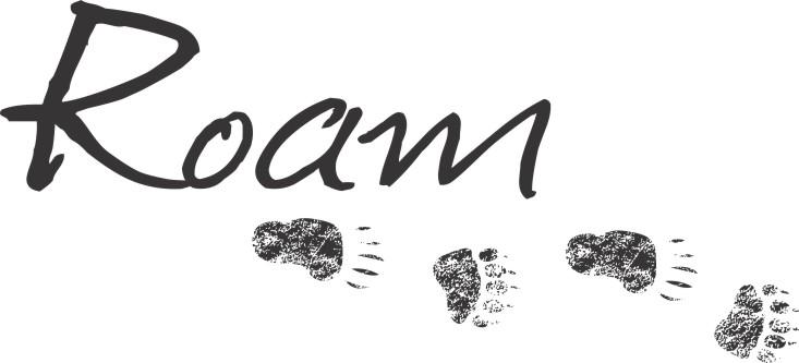 ROAM_bear.jpg