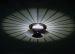 Minilt,sus Black Crystal Ring