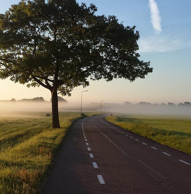 Hvor går veien din videre fra nå av?