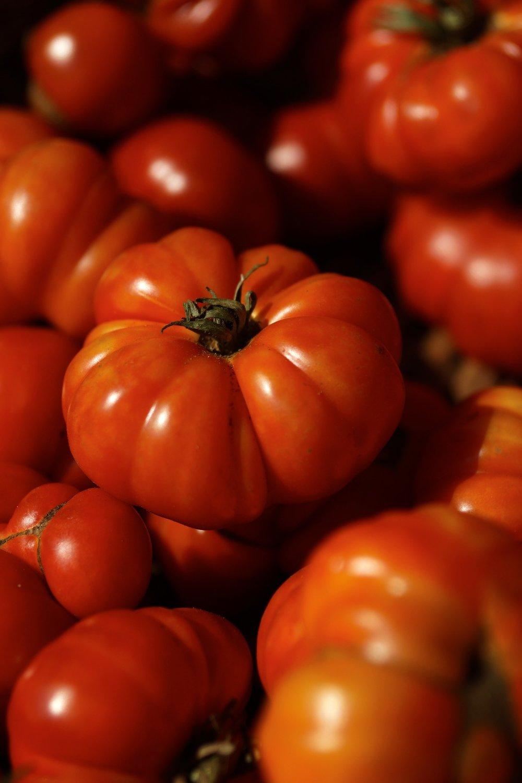 tomato-2718764_1920.jpg