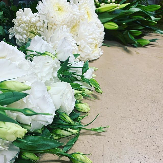 Making up posies #gisbornecottageflowers #prettyposies