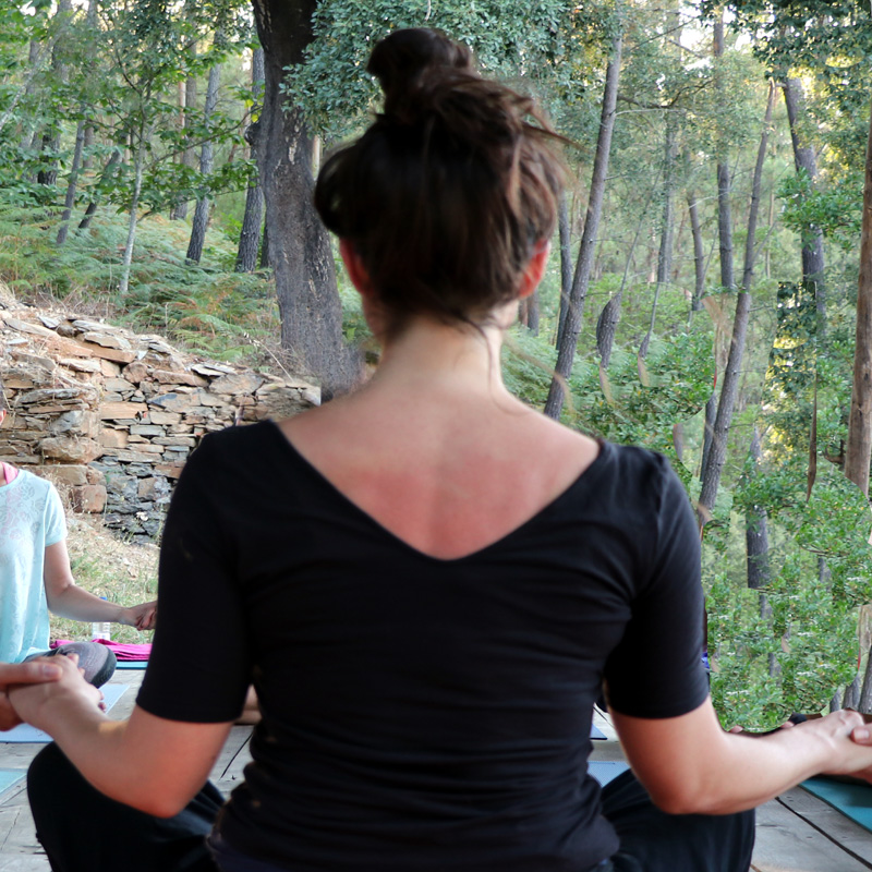 meditation, yoga, yoga retreats, womens retreats, nourish, nourish in nature, get nourished