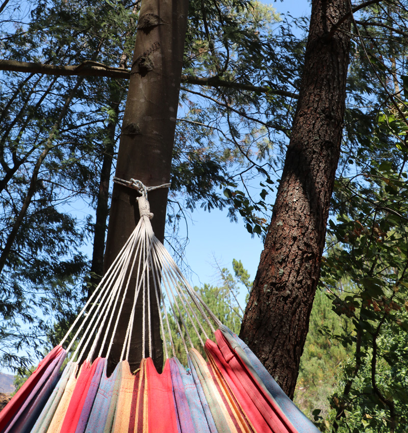 hammocked