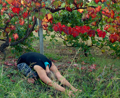 nourish in nature, childs pose, restorative yoga, stress management, yoga for stress, integrated womens health, inegrated womens health retreats, online resources for women, online integrated women health courses for women, ten day stress management challenge, stress management for women, online womens well being, online courses for women, online resources for womens health