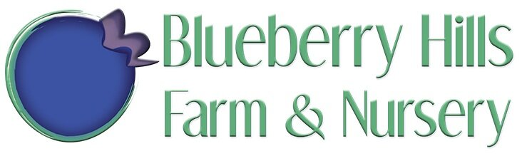 Blueberry Hills Nursery