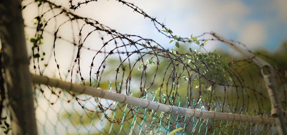 barbed-wire-600471.jpg