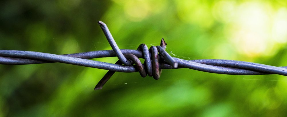 barbed-wire-819010.jpg
