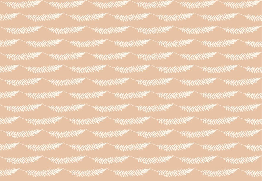Feather Like (White on Peach) ©Kate Lancaster
