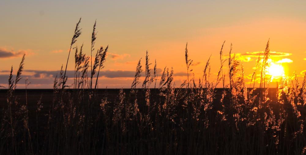 Romantische Sonnenuntergänge genießen. -